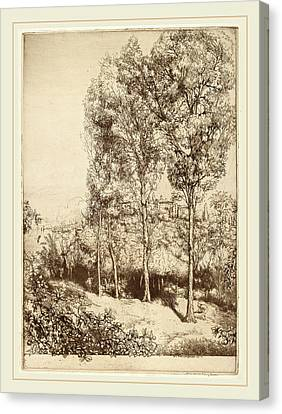 Donald Shaw Maclaughlan, Sunlight And Shadows Canvas Print by Litz Collection
