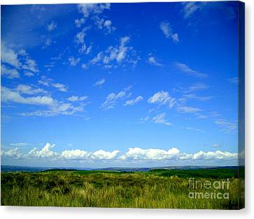 Donegal Scene Canvas Print by Nina Ficur Feenan