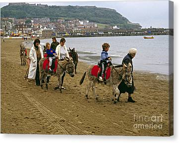 Donkey Ride Gb 1980s Canvas Print by David Davies