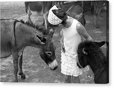 Donkey Whisperer Canvas Print by Brooke T Ryan
