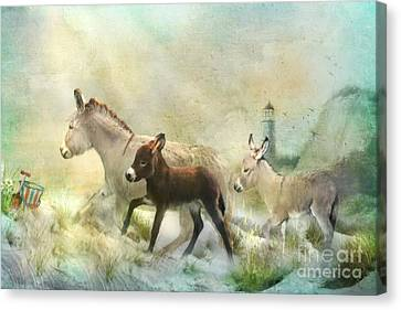 Donkey's Day Off Canvas Print by Trudi Simmonds