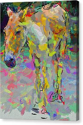 Donkey's Dreams Canvas Print by Yury Malkov