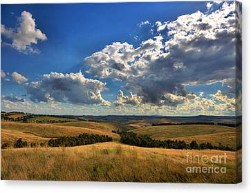Donny Brook Hills Canvas Print