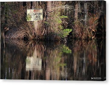 Don't Feed The Alligators Canvas Print by Phil Mancuso