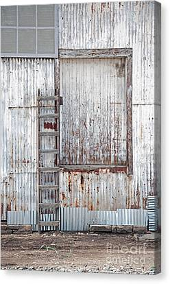 Door 1 Canvas Print