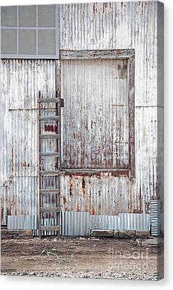 Door 1 Canvas Print by Minnie Lippiatt