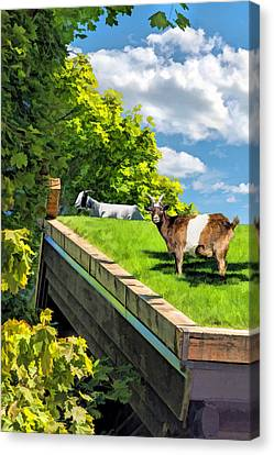 Door County Al Johnsons Swedish Restaurant Goats Canvas Print