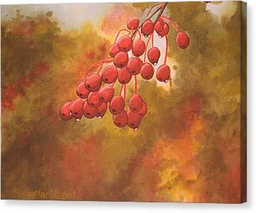 Door County Cherries Canvas Print by Rick Huotari