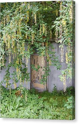 Canvas Print featuring the photograph Door Hidden By Flowers by Linda Prewer