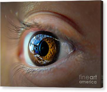 Door To The Soul Canvas Print by Will Cardoso