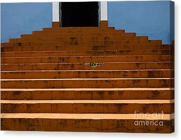 Doors And Doorways Minas Gerais State Brazil 14 Canvas Print by Bob Christopher