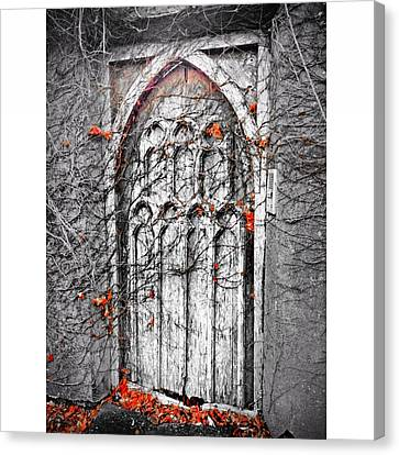 Doorway In Cork Canvas Print by Maeve O Connell