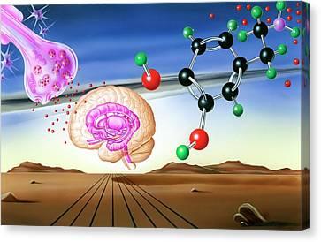 Dopamine Brain Chemistry Canvas Print