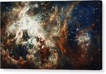 Doradus Nebula Canvas Print by Celestial Images