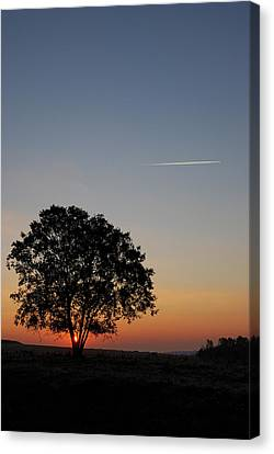 Canvas Print featuring the photograph Dorset Dawn by Wendy Wilton
