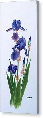 Dot's Iris Canvas Print