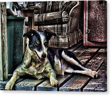 Canvas Print featuring the digital art 'dottie' by Robert Rhoads