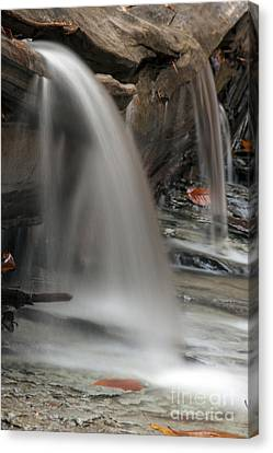 Eternal Flow Canvas Print - Double Cascade by Darleen Stry