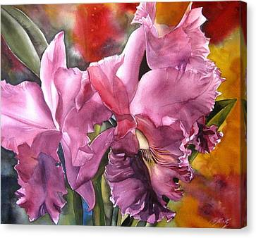 Double Cattleya Orchid Canvas Print