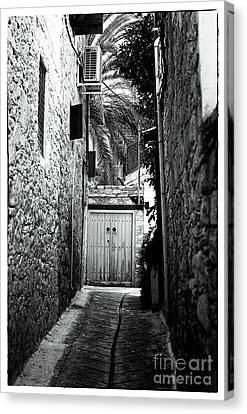 Double Doors In The Alley Canvas Print