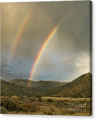 Double Rainbow In Desert Canvas Print by Matt Tilghman
