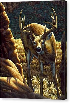 North American Wildlife Canvas Print - Whitetail Buck - Double Take by Crista Forest