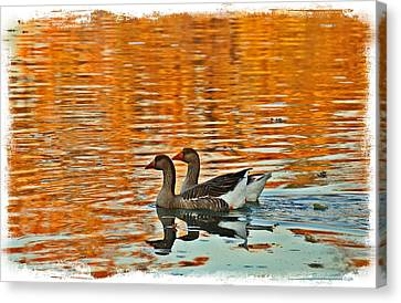 Canvas Print featuring the photograph Doubles by Lynn Hopwood