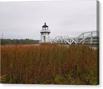 Doubling Point Light Canvas Print by Gene Cyr