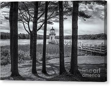 Doubling Point Light II Canvas Print