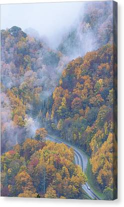 Fog Mist Canvas Print - Down Below by Chad Dutson