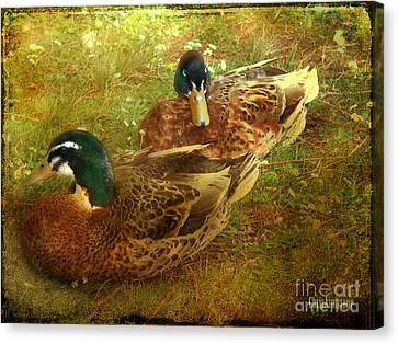 Canvas Print featuring the photograph Down By The Lake by Chris Armytage