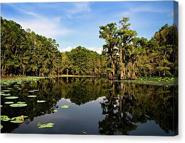Down In The Bayou Canvas Print by Lana Trussell