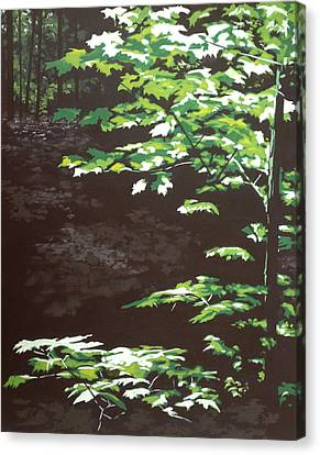 Dappled Light Canvas Print - Down In The Holler by Jeffrey Bess