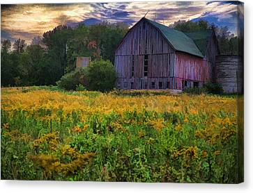 Down On The Farm II Canvas Print by John Crothers