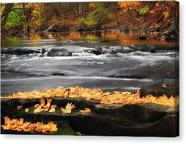 Down On The River Canvas Print by Bill Wakeley