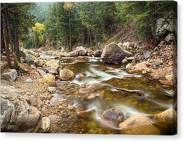 Down Stream Canvas Print by James BO  Insogna