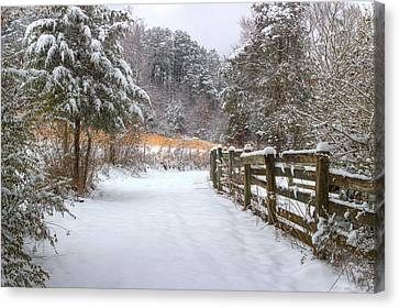 Fence Row Canvas Print - Down The February Lane by Michael Eingle