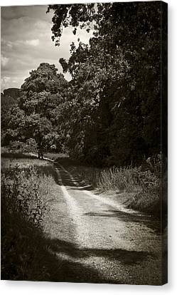Canvas Print featuring the photograph Down The Old Farm Track by Stewart Scott