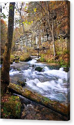 Downstream At Greer Spring Canvas Print by Marty Koch