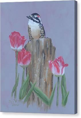 Arcylic Canvas Print - Downy Woodpecker by Bob Williams