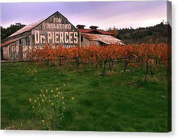 Dr Pierce's Barn Billboard Canvas Print by Jerry McElroy