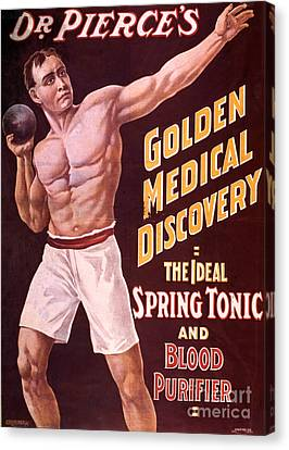 Dr Pierces Spring Tonic And Blood Canvas Print by Science Source