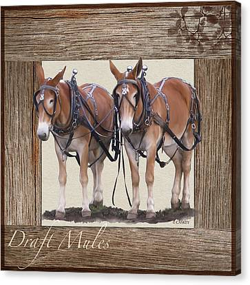 Draft Mules Canvas Print by Bethany Caskey
