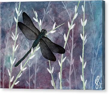 Dragon Dreams Canvas Print by Jamie Seul