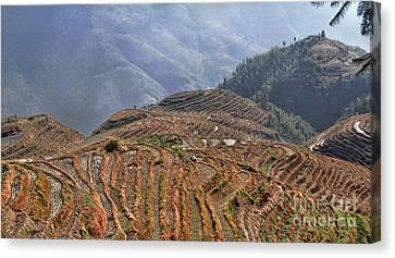 Dragon S Backbone Rice Terraces Canvas Print