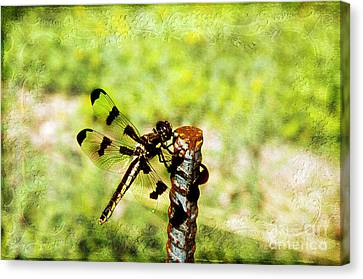 Dragonfly Eating Breakfast Canvas Print by Andee Design