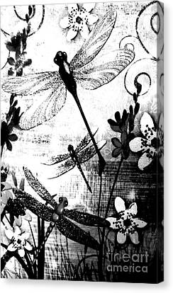 Dragonfly Canvas Print by Rose Wang