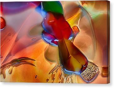 Dragonflying Canvas Print by Omaste Witkowski