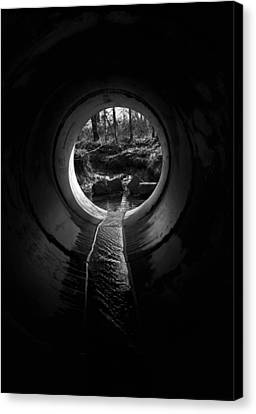 Drainpipe Canvas Print by Murray Bloom