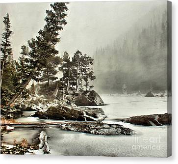 Dream Blizzard Canvas Print